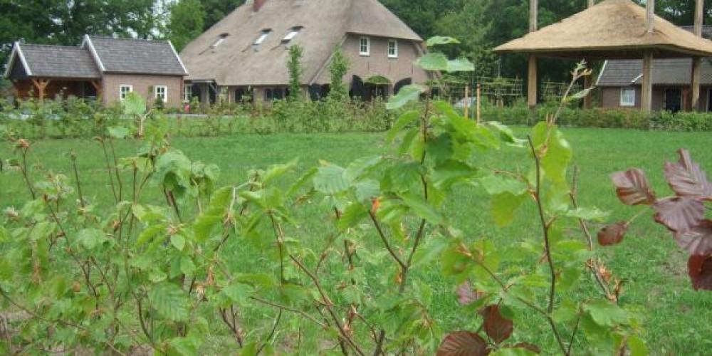 Boerderijtuin 1