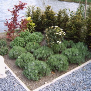 Steiger-vergroot-de-grote-tuin-16