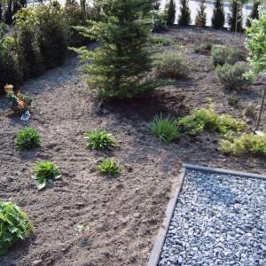 Steiger-vergroot-de-grote-tuin-23