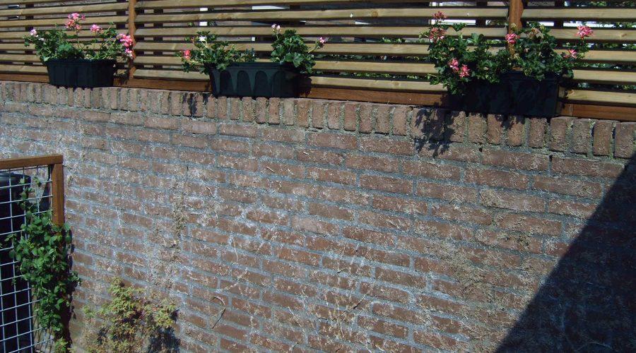 Een tuin vol privacy
